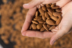 Hands with almonds Royalty Free Stock Images