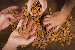 Hands with almonds Stock Photos
