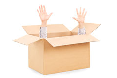Hands arising from a carton box symbolizing surrender Stock Image