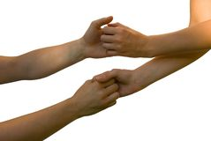 Hands and arms holding each other Stock Photography