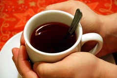 Hands around a cup of tea. Hands around a cup of hot wild berry tea Stock Photography