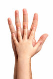Hands of the baby Royalty Free Stock Photography