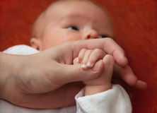 Hands of baby and mother Stock Photography