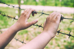 Hands and barbed wire. royalty free stock photo
