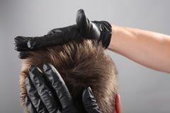 Barber art school stock images