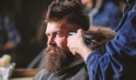 Hands of barber with hair clipper, close up. Hipster bearded client getting hairstyle. Barbershop concept. Barber works. With hair clipper. Man with beard in stock image