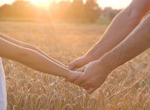 Hands and barley Royalty Free Stock Photos