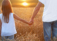 Hands and  barley. Father with his daughter holding hands Stock Photo