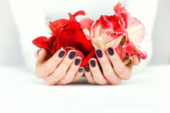 Hands with beautiful manicure holding bright flowers Royalty Free Stock Photo