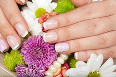 Hands with french manicured nails Royalty Free Stock Photography