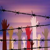 Hands Behind a Barbed Wire Stock Photography
