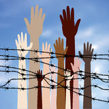 Hands Behind a Barbed Wire Royalty Free Stock Photography