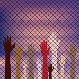 Hands Behind a Wire Fence Stock Photo