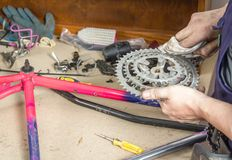Hands of bicycle mechanic cleaning chainring bike Stock Images