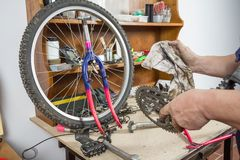 Hands of bicycle mechanic cleaning chainring bike Stock Image