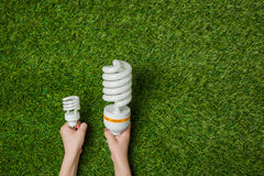 Hands with big and small energy saving lamps Royalty Free Stock Photos