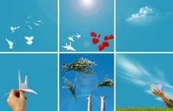 Hands, birds and sky Royalty Free Stock Image