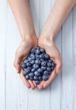 Hands Blueberries Food Background Stock Photo