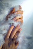 Hands and boa Royalty Free Stock Image