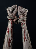Hands bound,bloody hands, mud, rope, on a black background, isolated, kidnapping, zombie, demon Royalty Free Stock Photography