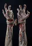 Hands bound,bloody hands, mud, rope, on a black background, isolated, kidnapping, zombie, demon Stock Photos