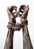 Hands bound,bloody hands, mud, rope, on a white background, isolated, kidnapping, zombie, demon. Hands bound,bloody hands, mud, rope, on a white background Stock Photography