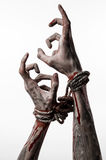 Hands bound,bloody hands, mud, rope, on a white background, isolated, kidnapping, zombie, demon Royalty Free Stock Image