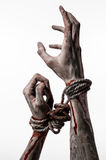 Hands bound,bloody hands, mud, rope, on a white background, isolated, kidnapping, zombie, demon. Hands bound,bloody hands, mud, rope, on a white background Royalty Free Stock Photography