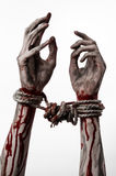 Hands bound,bloody hands, mud, rope, on a white background, isolated, kidnapping, zombie, demon Royalty Free Stock Photos