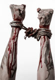 Hands bound,bloody hands, mud, rope, on a white background, isolated, kidnapping, zombie, demon. Hands bound,bloody hands, mud, rope, on a white background Royalty Free Stock Photo