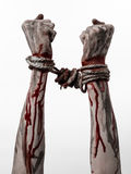 Hands bound,bloody hands, mud, rope, on a white background, isolated, kidnapping, zombie, demon. Hands bound,bloody hands, mud, rope, on a white background Royalty Free Stock Photos