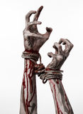Hands bound,bloody hands, mud, rope, on a white background, isolated, kidnapping, zombie, demon Stock Photo