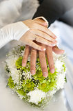The hands on the bouquet Suite. Stock Photo