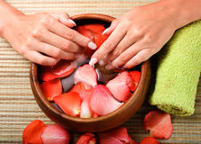 Hands in bowl of water with petals royalty free stock photo