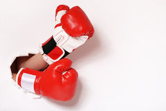 Hands in boxing gloves through paper hole Royalty Free Stock Image