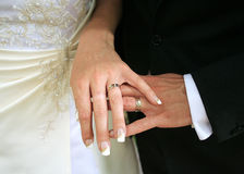 Hands of bride and bridegroom. With golden rings on theirs fingers stock image