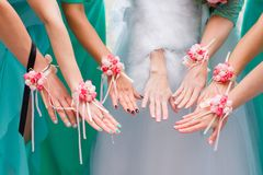 Hands of the bride and bridesmaids royalty free stock image
