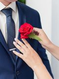 Bride corrects boutonniere on groom`s jacket before wedding cere stock photo