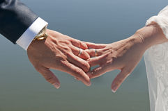 Hands of bride and groom Royalty Free Stock Photography