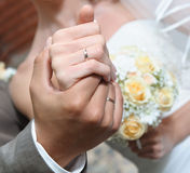 Hands of the bride and groom Royalty Free Stock Images