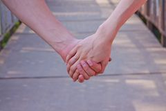Hands of the bride and the groom Stock Image
