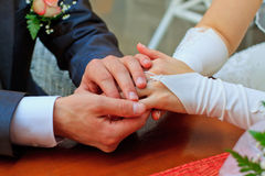 Hands of the bride and groom. Holding each other Royalty Free Stock Images