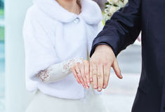 Hands of bride and groom with rings Stock Photos