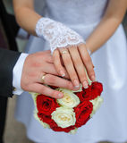 Hands of the bride and groom with rings Royalty Free Stock Images