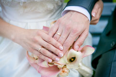 Hands of the bride and groom. Hands of the bride and groom on the wedding bouquet Stock Images