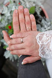 Hands of bride and groom in wedding rings Royalty Free Stock Photography
