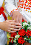 Hands of the bride and groom with wedding rings on a background Royalty Free Stock Image