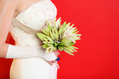 Hands of bride hold bouquet of lilies on red Royalty Free Stock Images