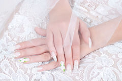 Hands of bride with manicure Stock Photos