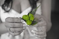 In the hands of the bride small flowers Royalty Free Stock Photography